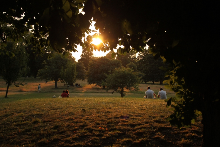 Evening in Hyde Park